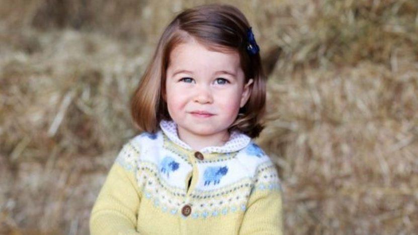В официальном Instagram герцога и герцогини Кембриджских появился официальный портрет их дочери