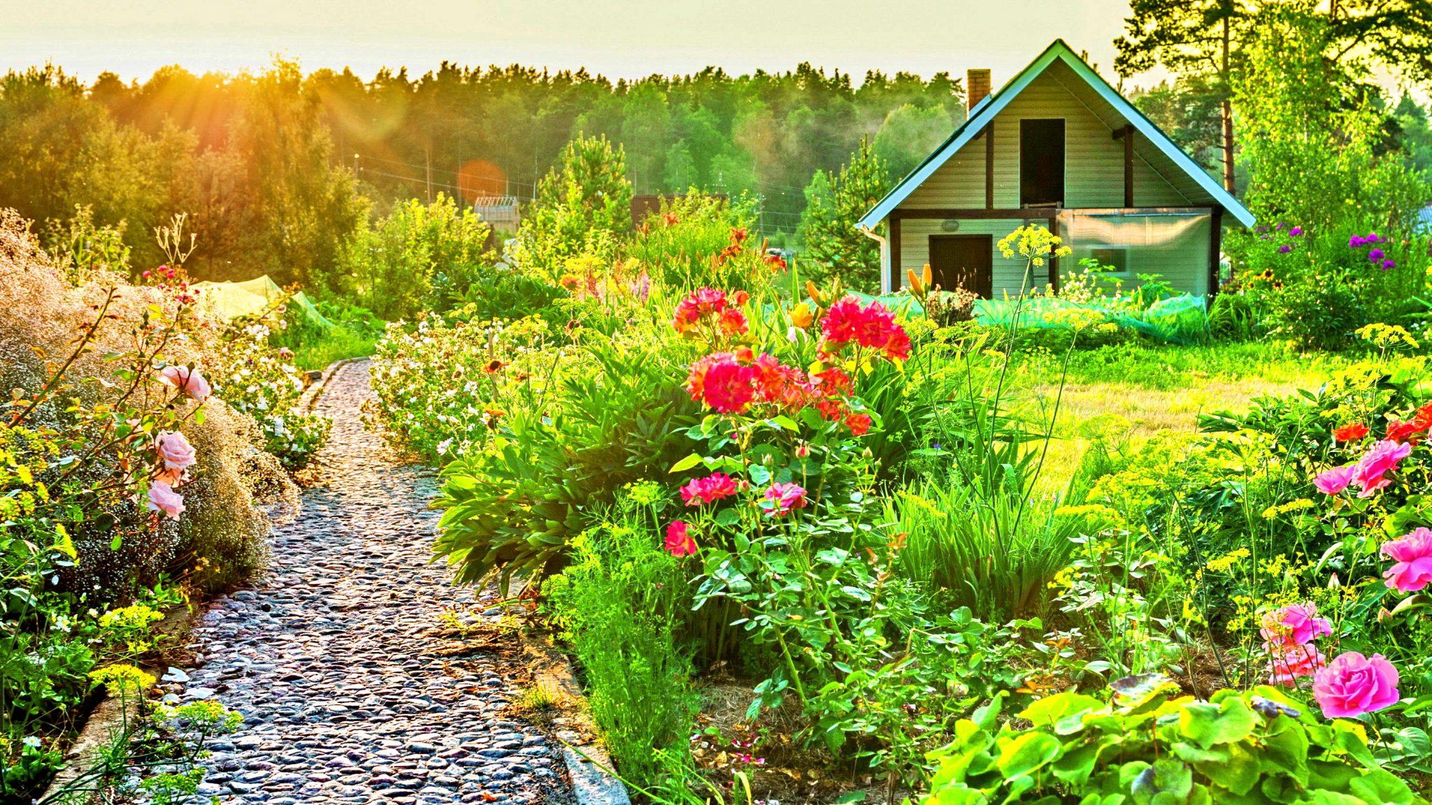 Госдумой был принят закон о прописке на садовых участках