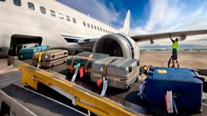 перевозкой багажа