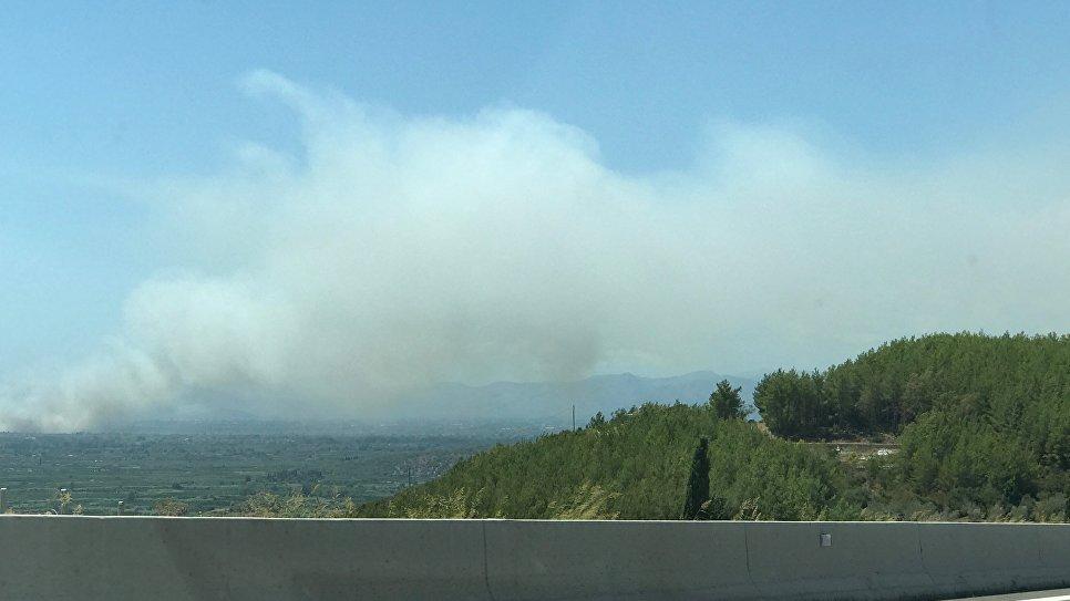 лесными пожарами
