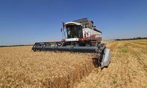 сельскохозяйственной