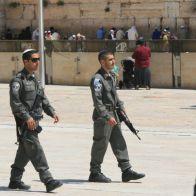 12 палестинцев