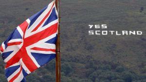 Шотландии