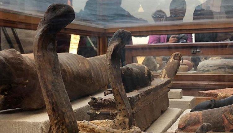мумифицированных животных