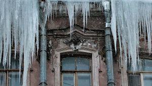 Барнауле