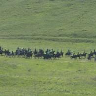 конный поход