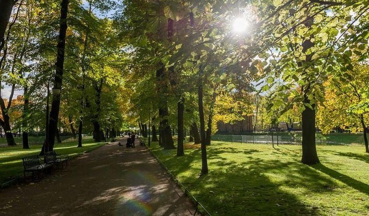 парке