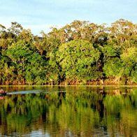 Амазонии