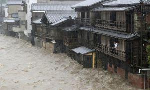 тайфун Хигибис