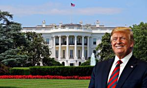 Белом доме
