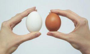 Яйцами