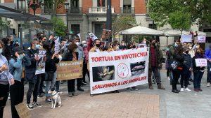 Против экспериментов над животными протестовали в Мадриде