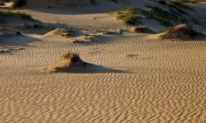 пустыню
