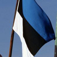 в Эстонии
